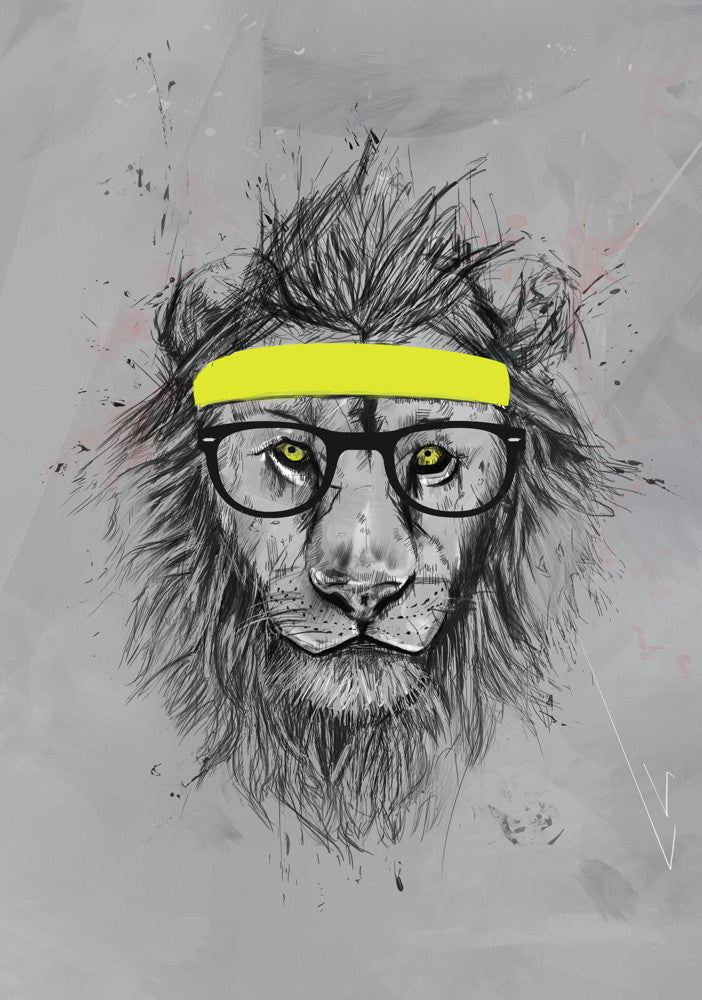 Balazs-Solti-Hipster-Lion