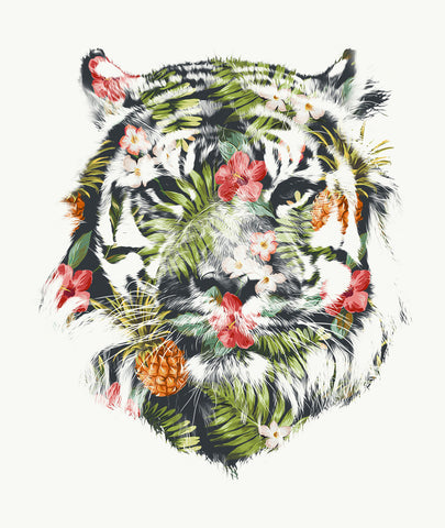 Tropical-Tiger-RobertFarkas-Niqoo-Gallery