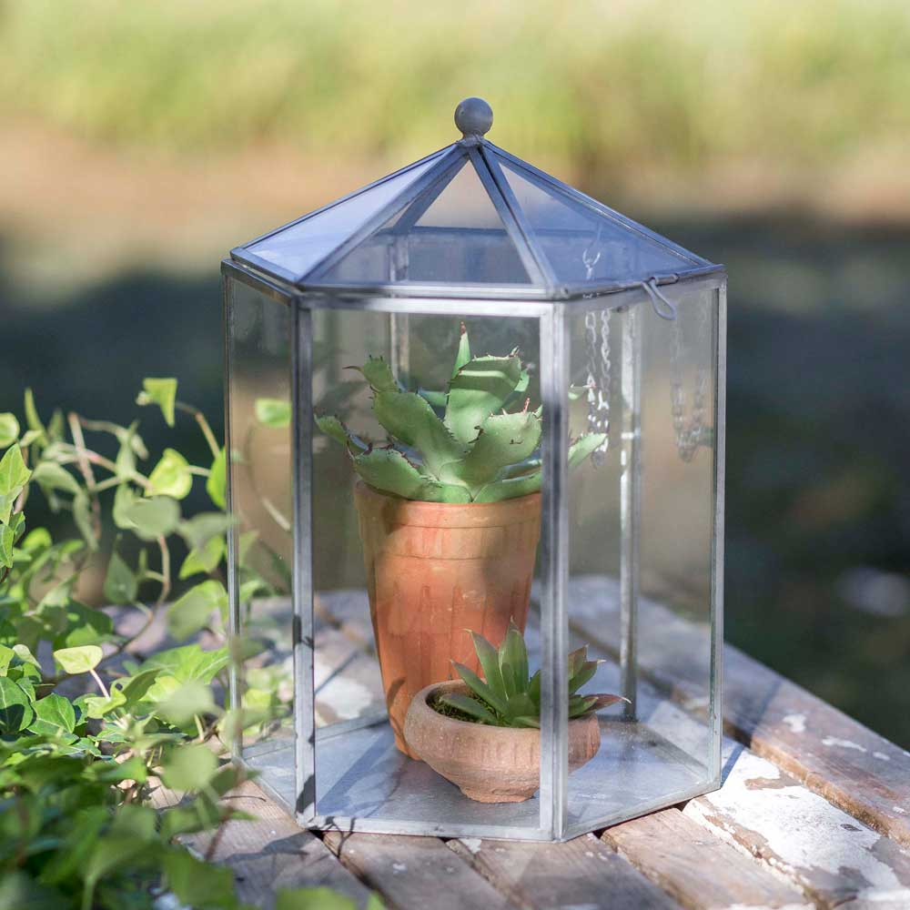 Hexagon Terrarium