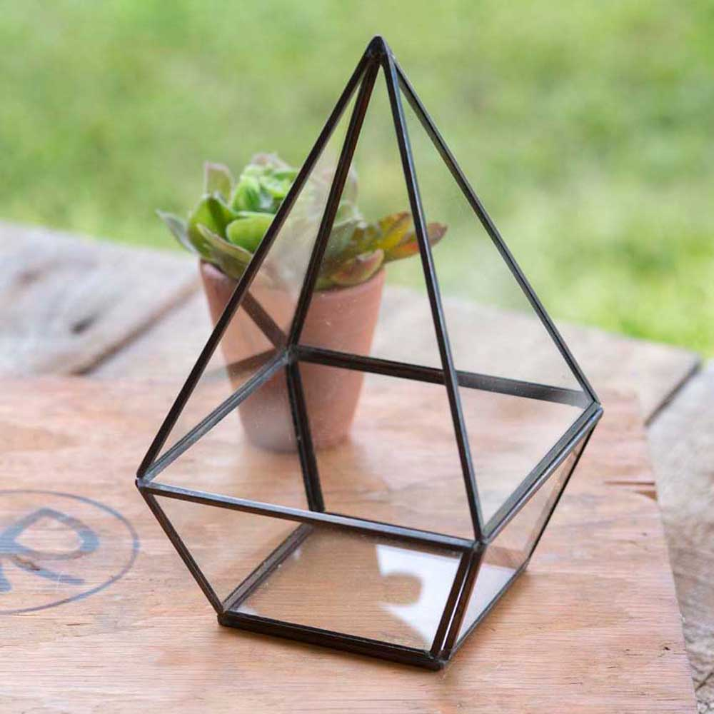 Tall Geometric Tabletop Terraium