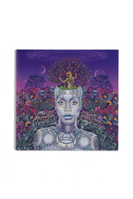Vinyl – New Amerykah Part 2