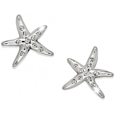 Cape Star Mini Post Earrings