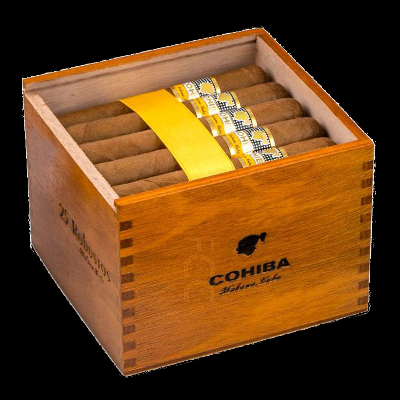 Cohiba Robustos - box of 25