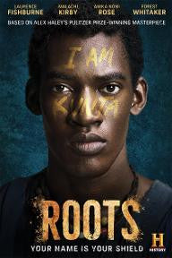 Roots Season 1 (2016) SD UV - Digital Movies