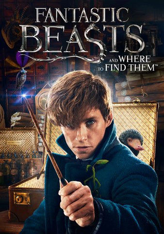 Fantastic Beasts  4K UHD VUDU or MA