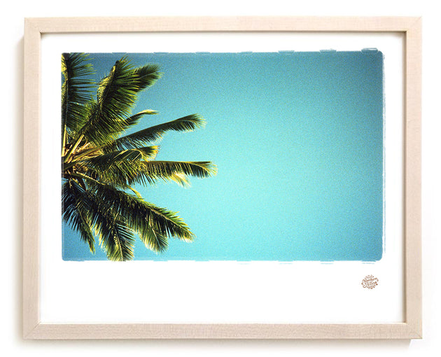 "Palm Tree Photo Print ""Siesta"""