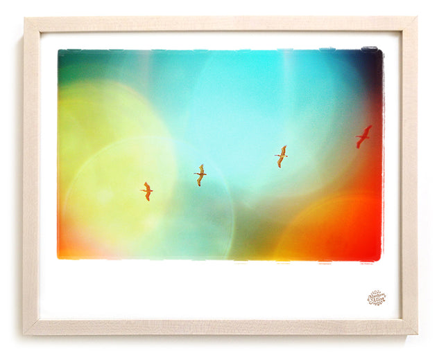 "Surf Photo Print ""Soar"" - Borrowed Light Series"