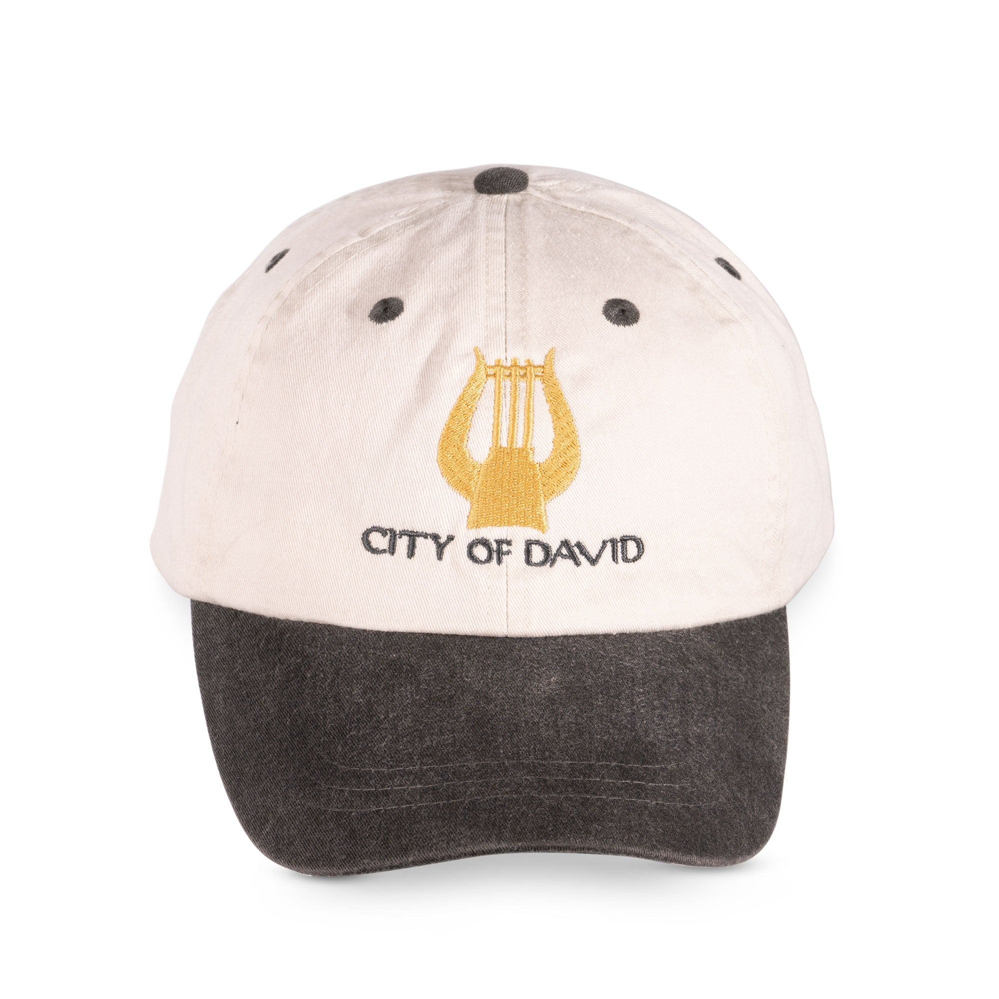City of David  two colors baseball cap