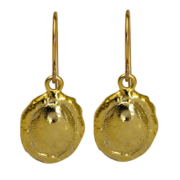 Golden Eternity Coin Earrings