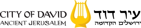 City of David Store logo