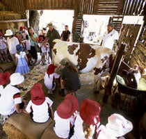Childrens-Farm