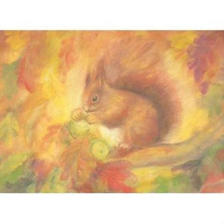 Autumn Squirrel Postcard Dragonflytoys