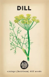Heirloom Vegetable Seeds - Dill