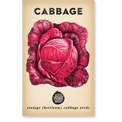 Heirloom Flower Seeds - Cabbage 'Savoy Purple', Dragonflytoys