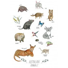 Greeting Card - Jess Racklyeft - Australian Animals