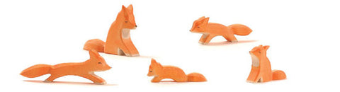 Family of 5 foxes - Ostheimer