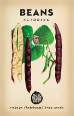 Heirloom Vegetable Seeds - Beans Climbing