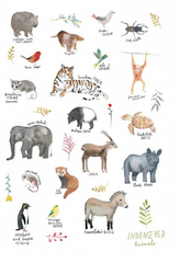 Greeting Card - Endangered Animals JM 225
