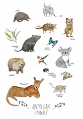 Greeting Card - Australian Animals JM 223