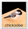 Needle Felting Kit - Chickadee