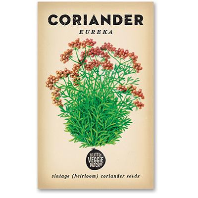 Heirloom Flower Seeds - Coriander Eureka