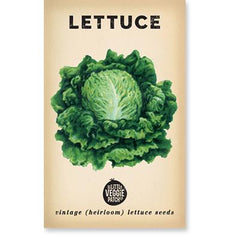 Heirloom Vegetable Seeds - Lettuce Boston