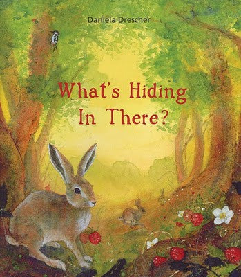 What's hiding in there   pocket book flap book
