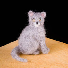 Needle Felting Kit - Kitty