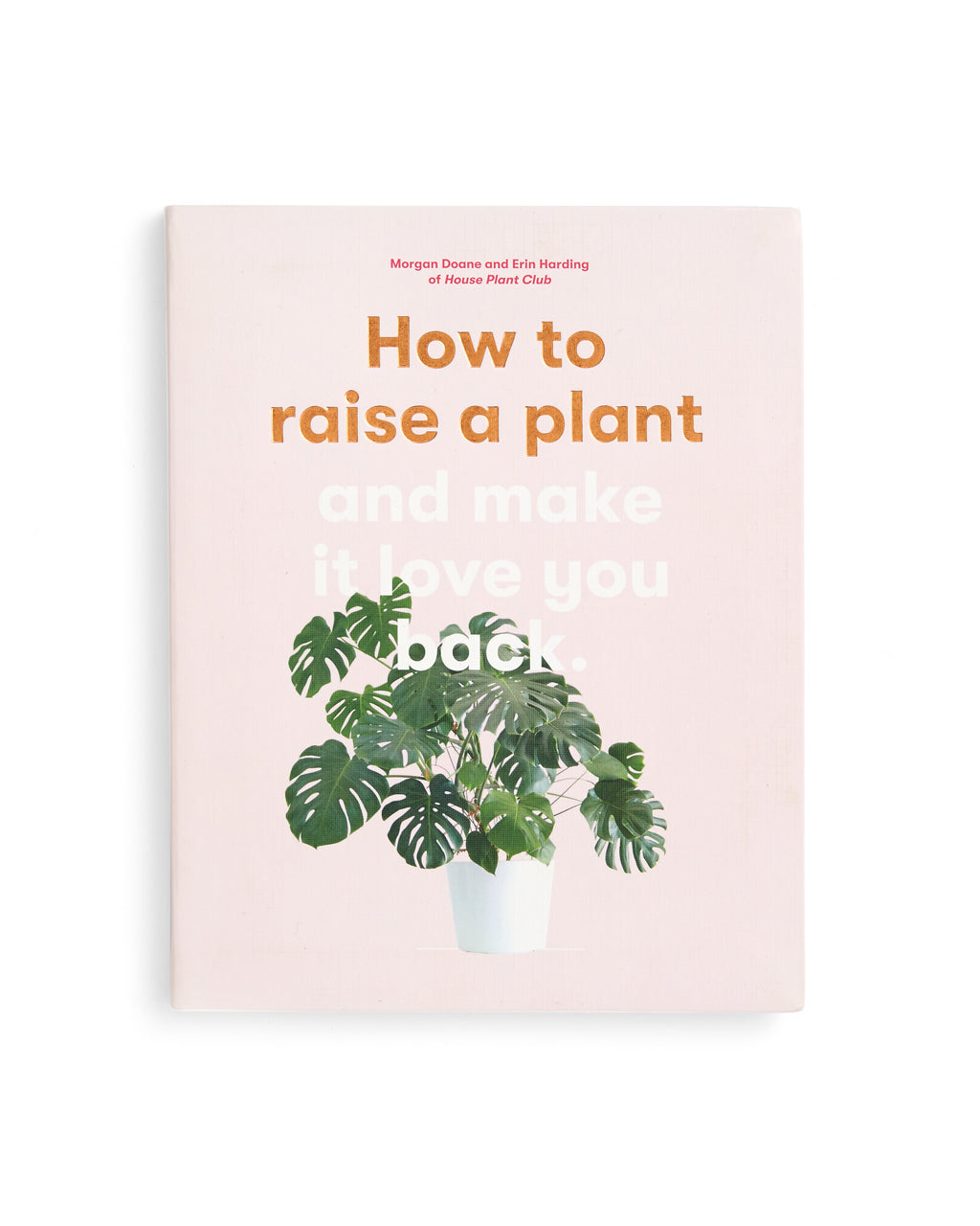 how to raise a plant cover