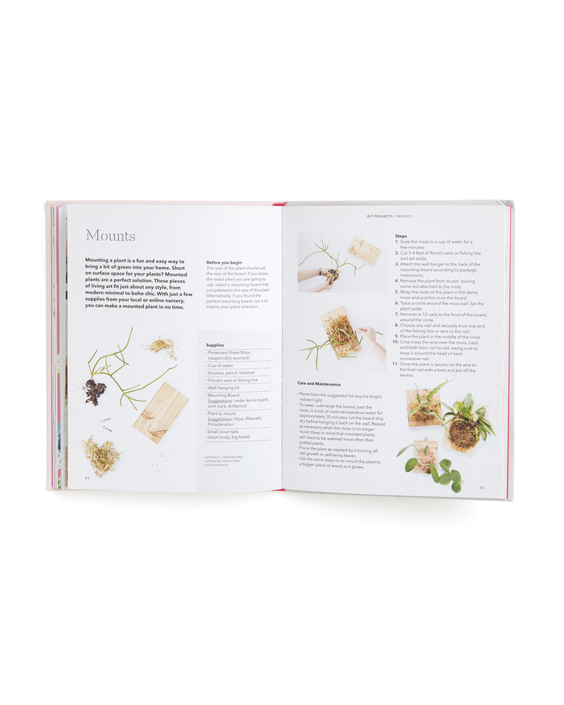 interior pages of how to raise a plant book featuring planting tips