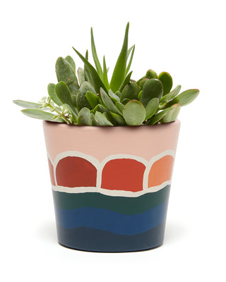 sunset designed planter with plant