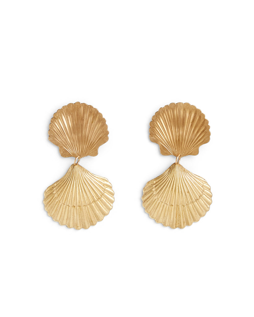 shell shaped earrings