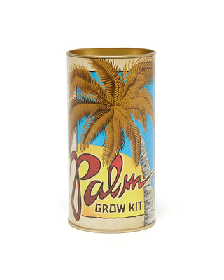 palm tree grow kit