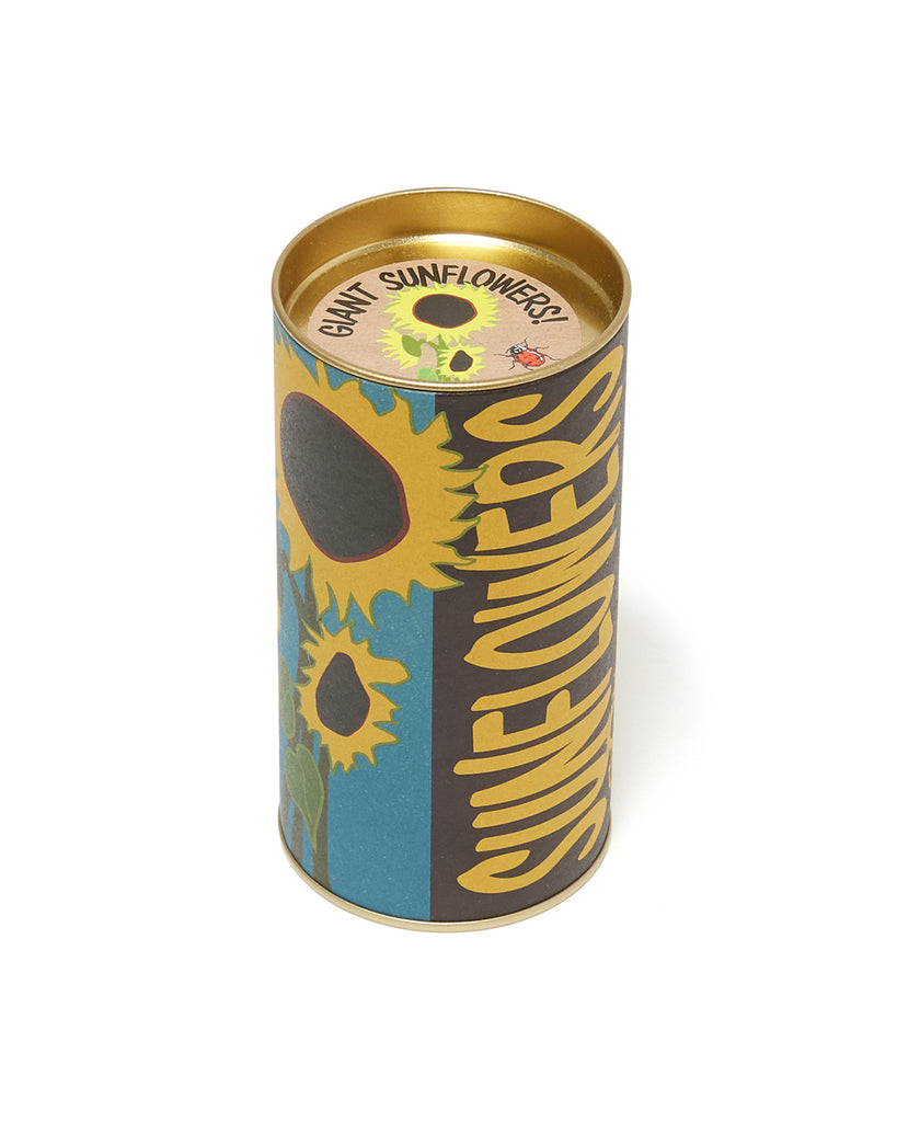 sunflower grow kit in tin packaging