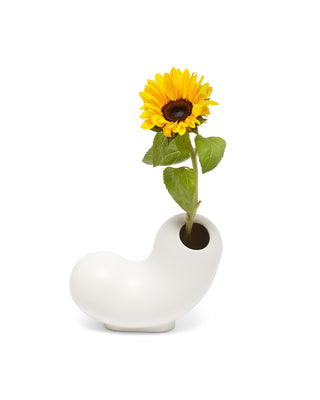 white curly ceramic vase with a sunflower