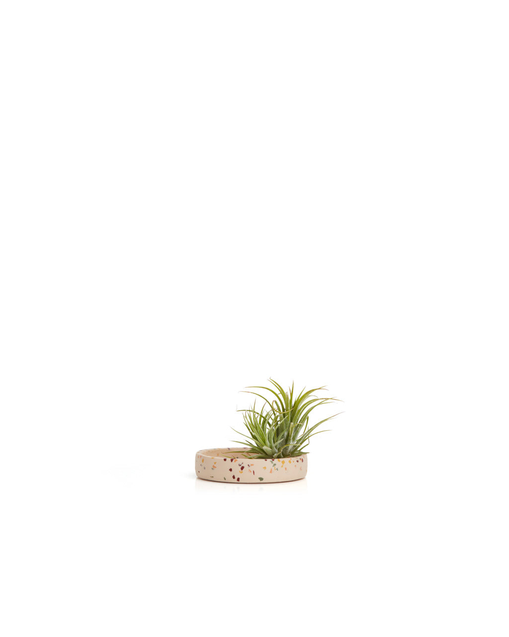 This small tray by Capra Designs comes in a natural beige color.
