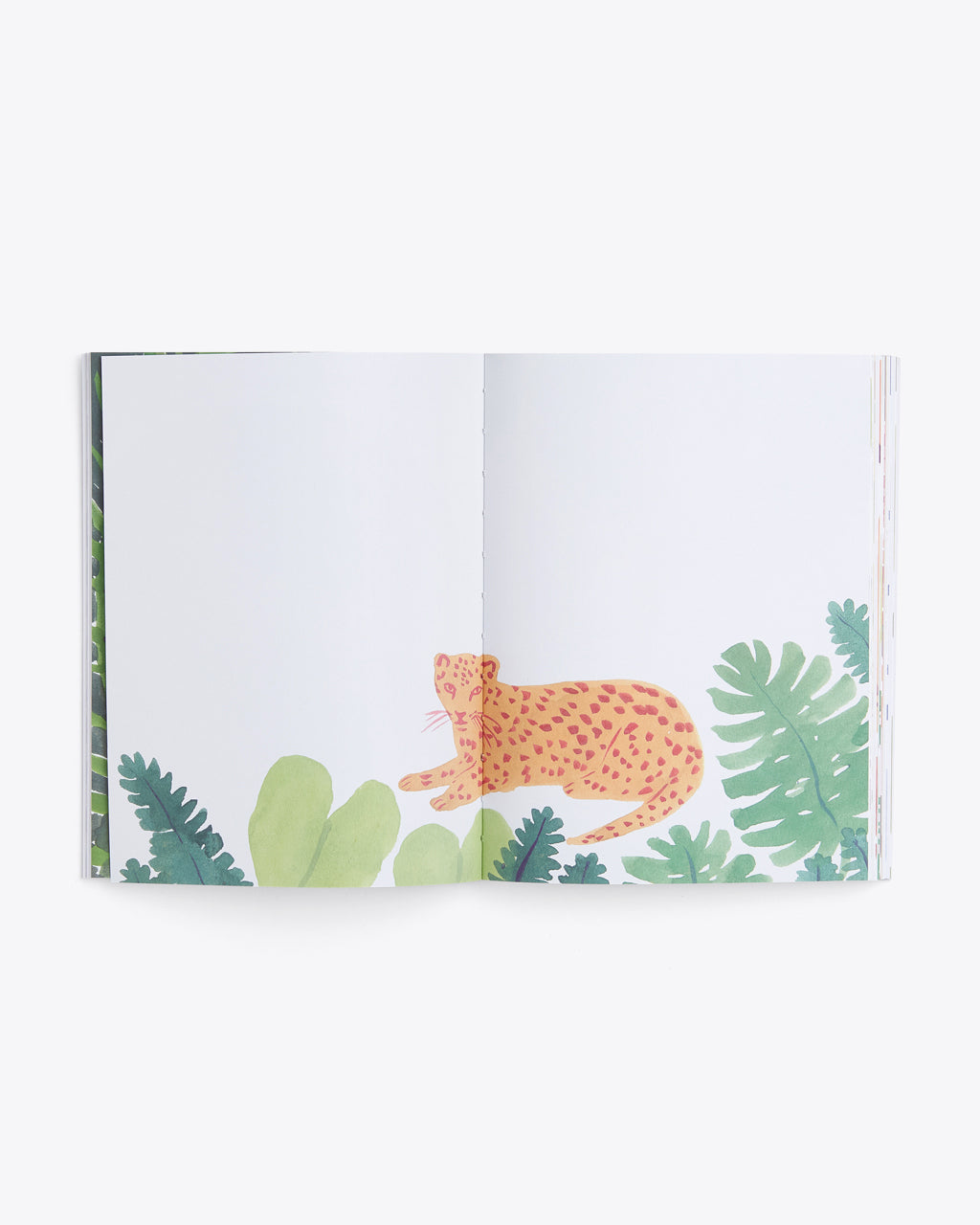interior image of blank pages featuring a landscape design and a leopard