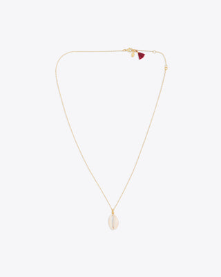 single shell gold chain necklace