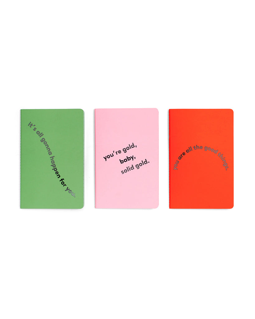 hold that thought notebook set - compliments