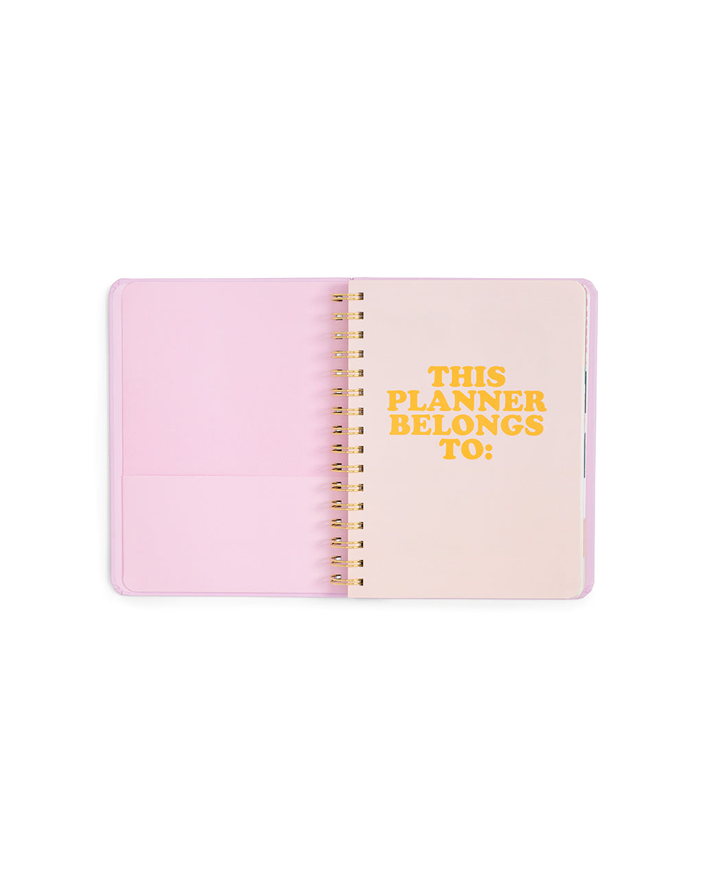 2019 Medium 12-Month Annual Planner - Gold Holographic
