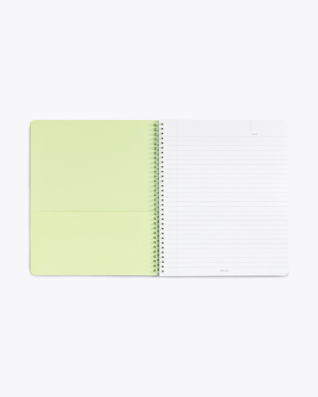 interior image of notebook showing lined pages and pastel green end sheet with pocket
