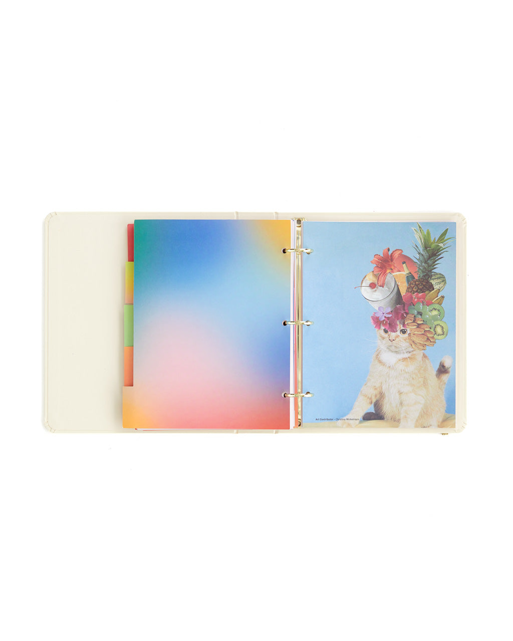 Interior pages with bright colorful art work included