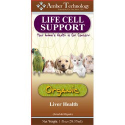 Amber Technology Life Cell Support