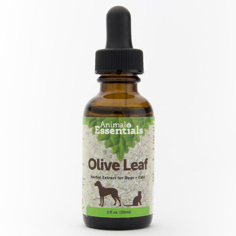 Animal Essentials Olive Leaf