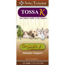 Amber Technology Tossa K