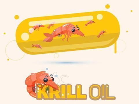 Top 5 Health Benefits From Krill  Oil You Want To Know