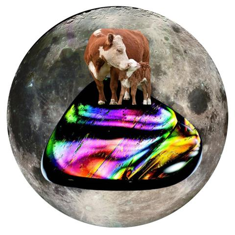 "Cow and Fire Obsidian 5"" x 5"" Full Moon Oracle Print"
