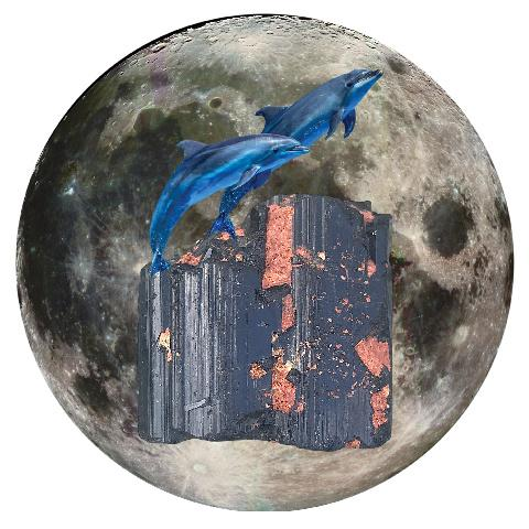"Dolphin and Black Tourmaline 5"" x 5"" Full Moon Oracle Print"