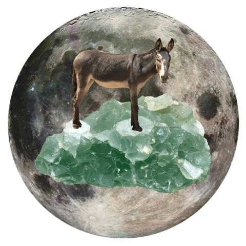 "Fluorite and Donkey 5"" x 5"" Full Moon Oracle Print"