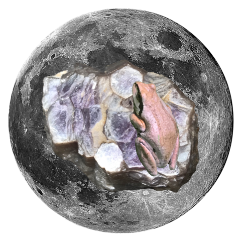 "Frog and Lepitolite 5"" x 5"" Full Moon Oracle Print"